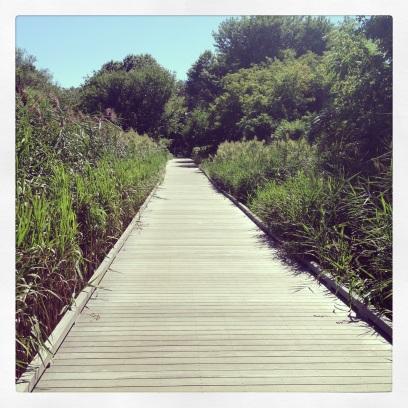 2013 08-24 - Long Walk Pathway