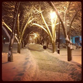 Remember the beautiful fall path? Just as beautiful in Winter.