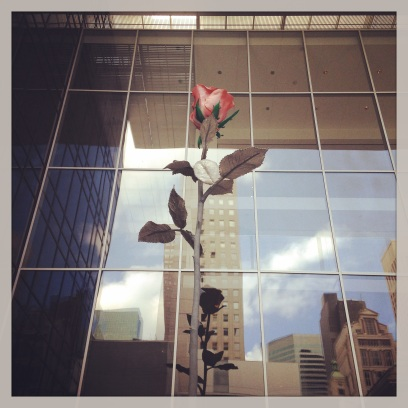 2014 06-14 MoMA A Rose is a Rose