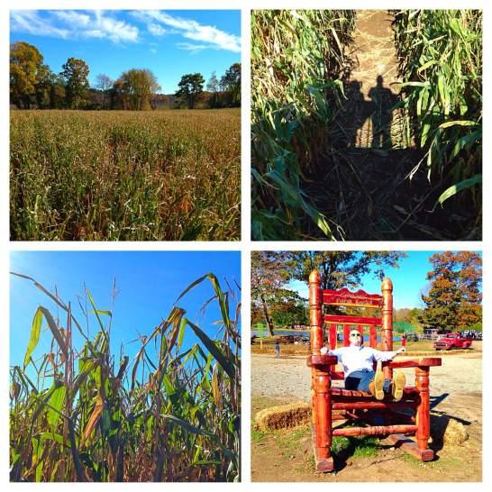 2014 10-25 Corn Maze