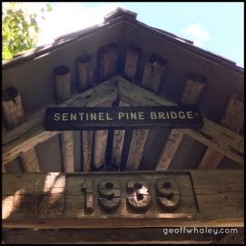 2017.08.19 Flume Gorge Covered Walking Bridge