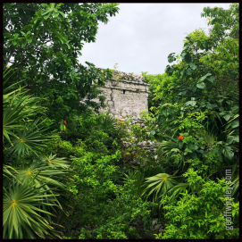 2018.06.13 Tulum Watchtower