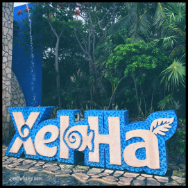 2018.06.13 Xel-Ha Ecological Park