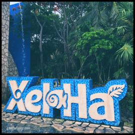 2018.06.13 Xel-Ha Ecological Park