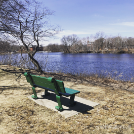 Lunch bench on the Charles River